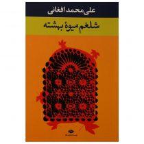کتاب شلغم میوه بهشته اثر علیمحمد افغانی نشر نگاه